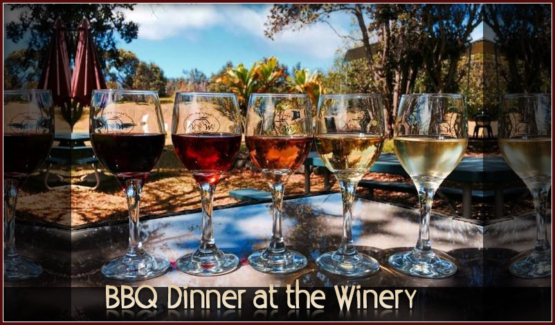 BBQ at the Volcano Winery